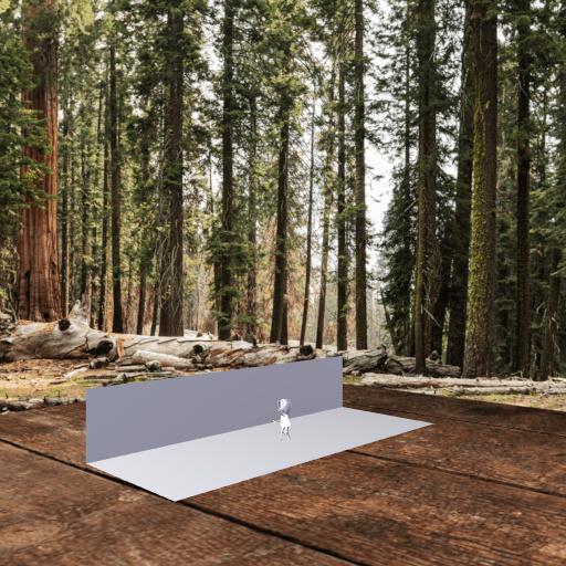 web AR XR+ wood